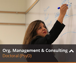 Learn more about org. management and consulting here.