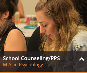 Learn more about school counseling/pps here.